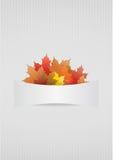 Placa do outono Fotografia de Stock