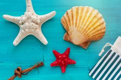 A placa do verão do mar descasca peixes da vieira e da estrela no fundo de madeira azul fotos de stock royalty free