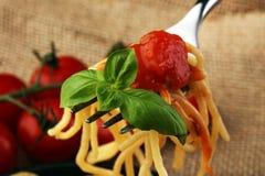 A placa dos espaguetes deliciosos Bolognaise ou Bolonhês com segurelha triturou o molho da carne e de tomate decorado com queijo  Fotografia de Stock