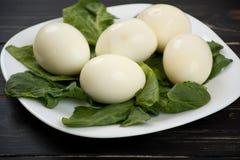 Placa dos ovos cozidos Imagem de Stock