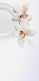 Placa e flores brancas Fotos de Stock