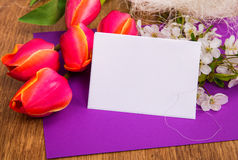 Placa en fondo púrpura con los tulipanes rojos Imágenes de archivo libres de regalías