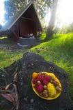 Placa exótica de la fruta Fotos de archivo
