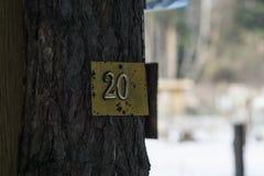 A placa número 20 é unida a uma árvore Fotografia de Stock