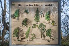 Placa na floresta litoral que explica as árvores Foto de Stock Royalty Free