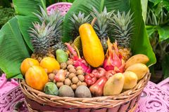 Placa por completo de las frutas exóticas de Tailandia imágenes de archivo libres de regalías