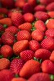 Placa por completo de stawberries rojos Imágenes de archivo libres de regalías