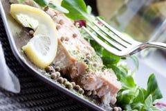 Placa Salmon Imagem de Stock Royalty Free