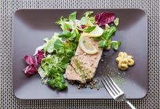 Placa Salmon Imagens de Stock Royalty Free
