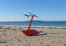 Placa surfando do papagaio na praia 3 imagem de stock