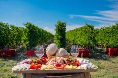 Placa tradicional de la comida con el vino y viñedos en el fondo Foto de archivo
