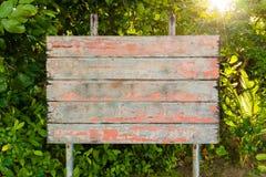 A placa vazia do vintage velho assina dentro a floresta Fotografia de Stock Royalty Free