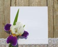 Placa vazia em pranchas com íris Imagem de Stock