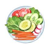 Placa vegetal con los tomates cortados libre illustration