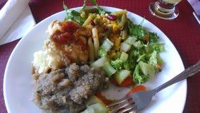 Placa vegetariana Fotografía de archivo