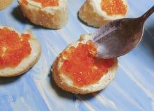 Placa vermelha da colher do caviar, proteína de madeira Fotos de Stock Royalty Free