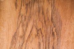 Placage en bois réaliste Photo libre de droits