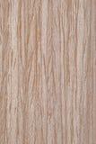 Placage normal en bois d'érable Image stock