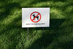 Placard with an inscription - no dogs allowed. Board in the park Stock Photos
