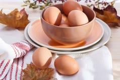 Placas com ovos Imagens de Stock Royalty Free