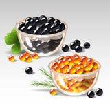 Placas con el caviar Fotografía de archivo