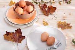 Placas con los huevos Foto de archivo libre de regalías