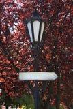 Placas de calle y luces Imagen de archivo libre de regalías