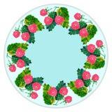 Placas de la decoración, frutas, bayas ilustración del vector
