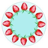 Placas de la decoración, frutas, bayas Imagen de archivo libre de regalías