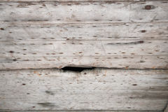 Placas de madeira velhas Textured do fundo Foto de Stock Royalty Free