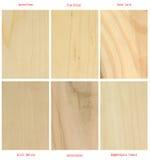 Placas de madera (con nombres latinos internacionales) Fotografía de archivo libre de regalías