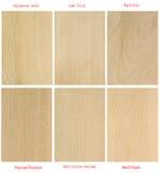Placas de madera (con nombres latinos internacionales) Imagenes de archivo