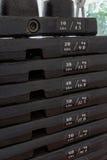 Placas del hierro, máquina del entrenamiento del peso Fotografía de archivo libre de regalías