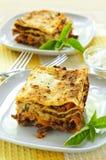 Placas del lasagna Imagenes de archivo