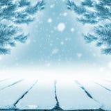 Placas na neve imagens de stock royalty free