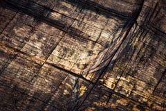 Placas spruce velhas podres do detalhe Fotografia de Stock
