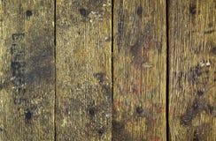 Placas sujas Imagem de Stock