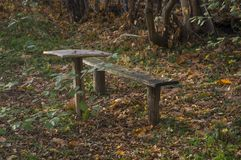 Place for autumn nostalgia. Old wooden bench and little table among dry foliage Royalty Free Stock Photography