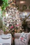 Place the Christmas tree. Stock Photos