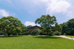 Place d'herbe dans le jardin botanique de Zhongshan Photos stock