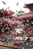 Place de Bhaktapur Durbar avec Royal Palace et des pigeons Le Népal, Katmandou Photographie stock libre de droits