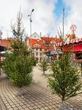 Place de Livu avec des arbres de Noël dans la vieille ville de Riga Image stock