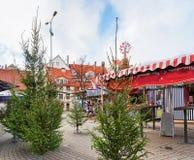 Place de Livu avec des arbres de Noël dans la vieille ville de Riga Images stock