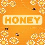 Place de marguerites d'abeilles de miel illustration stock