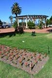 Place de Montevideo avec des fleurs Photographie stock libre de droits