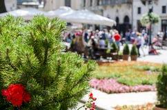 Place de rue de ville d'été Photo stock