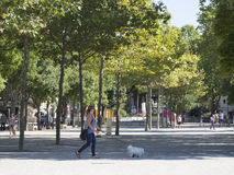 Place des Arènes, Nîmes, France Royalty Free Stock Image