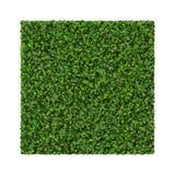 Place faite à partir des feuilles de vert d'isolement sur le fond blanc 3d rendent Photos libres de droits