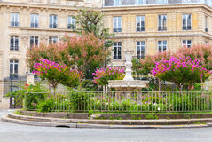 Place Francois 1er in Paris, France. Old fountain and colorful flowers, Place Francois 1er, Paris, France Stock Photo