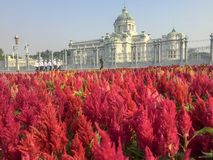 Ananta Samakhom Throne Hall place royalty free stock images
